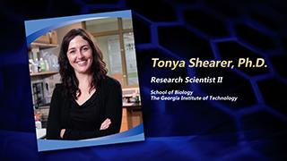 Dr. Tonya Shearer